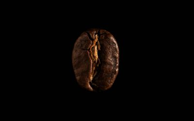 סוגי פולי הקפה המובחרים של אילנס